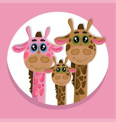 cute giraffes family cartoon icon vector image