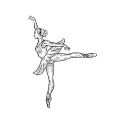 ballet dancer woman sketch engraving vector image