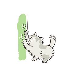 banner with naughty cat scratching furniture vector image
