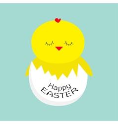Easter sleeping chicken egg shell baby background vector