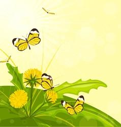 Flower and butterflies vector