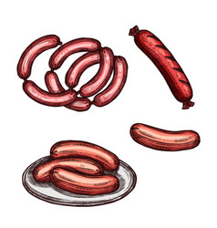Grilled meat sausage and frankfurter sketch vector