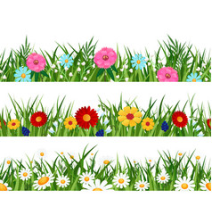 spring flowers lawn patterns vector image
