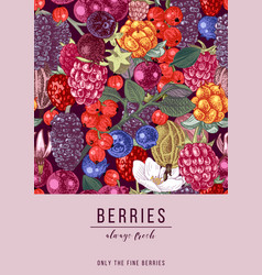 vertical banner with berries vector image