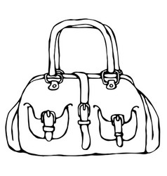 modern fashion bag or purse female accessory vector image vector image