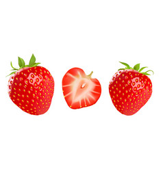 strawberry isolated on white background vector image vector image