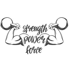 arm bicep strong hand holding a kettlebell icon vector image