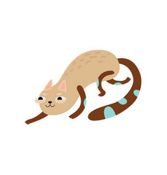 Funny cat sneaking cute animal pet character vector