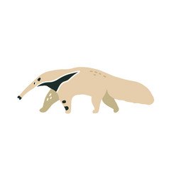 Giant anteater or ant-bear with long nose walking vector