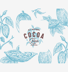 Hand drawn cocoa beans branch background vector