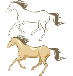 horse gallop vector image
