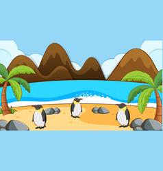 Scene with penguins on beach vector