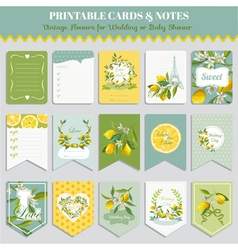 Vintage Lemon Flowers Card Set Birthday Wedding vector image