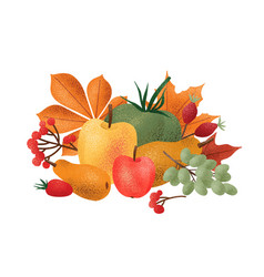 decorative autumn composition with fresh harvested vector image