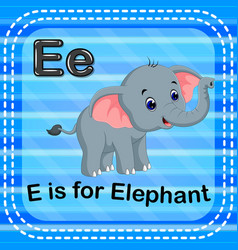 flashcard letter e is for elephant vector image