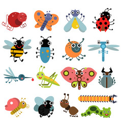 Insects and bugs vector