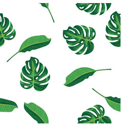 Pattern green leaves of tropical plant palm and vector