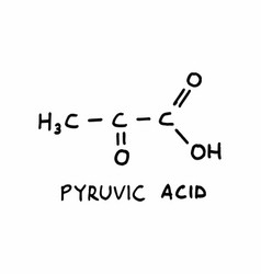 pyruvic acid structural formula vector image