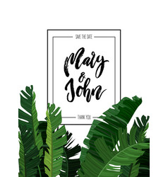 Tropical design with exotic palm leaves vector