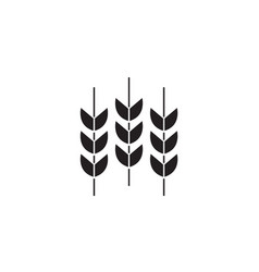 wheat grains black concept icon wheat vector image