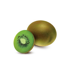 whole and piece of kiwi fruit isolated on white vector image