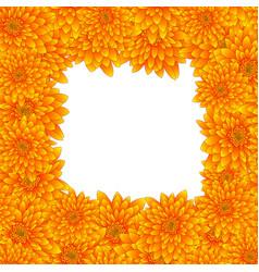 Yellow chrysanthemum border isolated on white vector