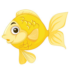 A goldfish on white background vector