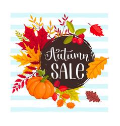 autumn sale design vector image