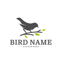 bird logo design template bird icon concept vector image