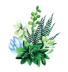 Bright watercolor plants tiny color bouquet vector