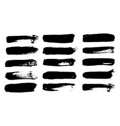 collection natural brush strokes black vector image