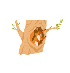 Cute squirrel in tree hole waving with paw vector