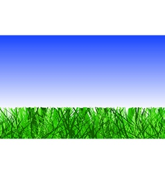 mown lawn vector image