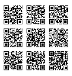 set of abstract qr codes vector image vector image