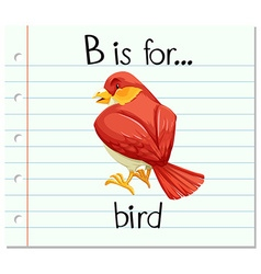 Flashcard letter B is for bird vector