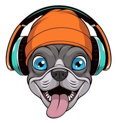 Funny french bulldog vector