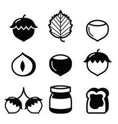 Hazelnuts nuts - food icons set vector