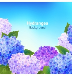 Hydrangea Flowers Background vector