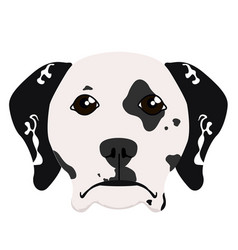 isolated dalmatian avatar vector image