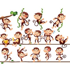 Monkeys doing different actions vector image