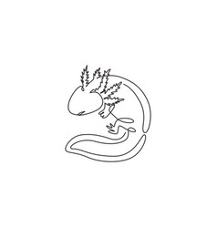 One continuous line drawing cute axolotl vector