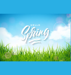 Spring with green grass vector