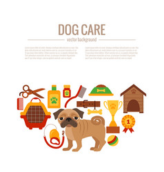 pug care infographic concept vector image
