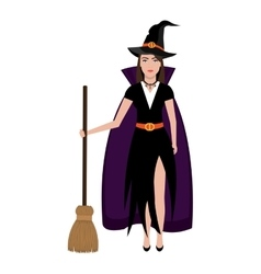 Beautiful witch costume with broomstick vector image