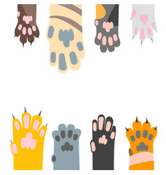 cartoon different cat paw card background vector image vector image