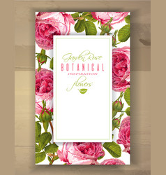 rose vertical banner vector image