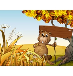 A fat beaver holding an empty signboard vector image