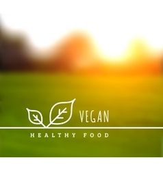 concept natural vegetarian health food vector image