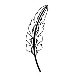 outline natural exotic leaf branch style vector image