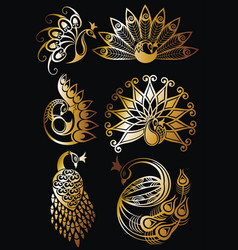 Peacock bird symbols vector
